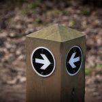 Markenorientiertes und analytisches Marketing – zwei Welten, ein Ziel