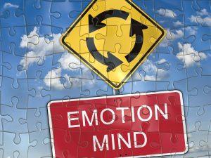 Gefühl oder Verstand - die Nutzwertanalyse hilft